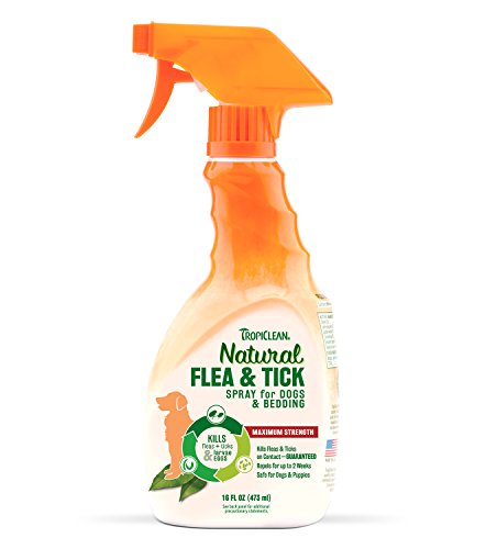 Flea and Tick Spray for Pets 41tkQaGx3yL