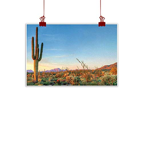 (duommhome Cactus Modern Frameless Painting Photo of Cactus with Spikes Plant Flower in a Desert at The Sunset Lansdcape Image Painting Artwork of Living Room Bedroom Office W24 xL16 Multicolor )