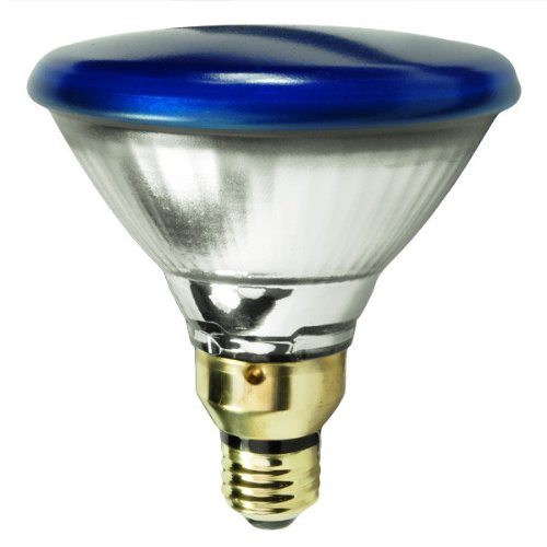 GE Outdoor Floodlight 13465 85-Watt PAR38 Blue Light Bulb with Medium Base, 1-Pack
