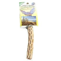 Polly\'s Cholla Cactus Bird Perch, Small