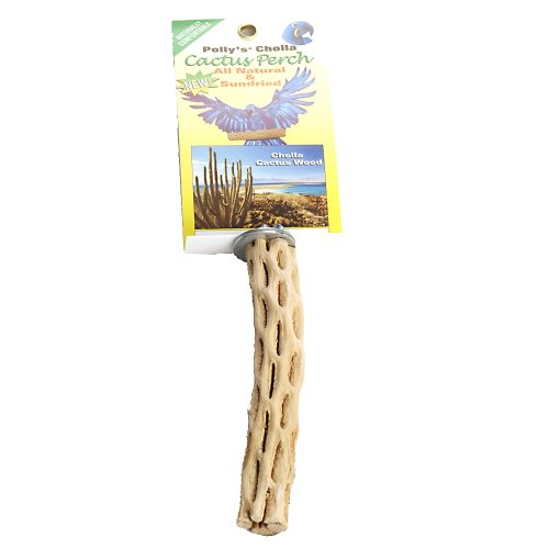 Polly's Cholla Cactus Bird Perch, Small