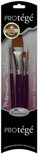 Connoisseur Protege 4-Piece Premium Taklon Short Handle Brush Set ()