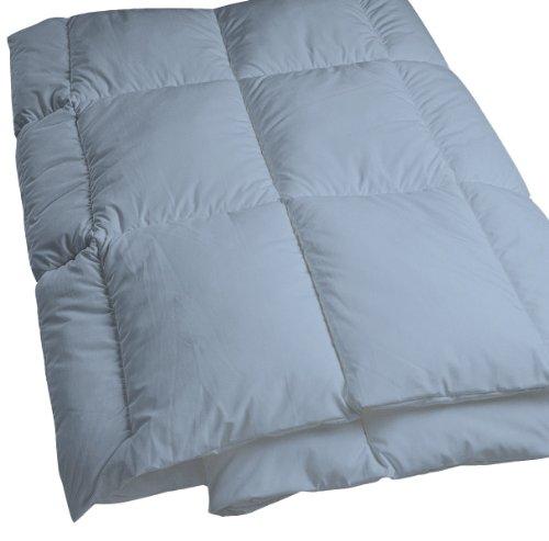 Dust Mite- and Allergen-Proof Comforter; DreamFill/Premium Microfiber (Queen; Blue/Gray)