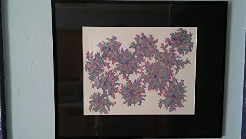 Abstract Flowers - Multicolored Pen and Ink Original Artwork Framed, 11'' x 14'' by Qute Studio