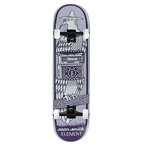 element-skateboard-complete-smith-zipper-775-black-assembled