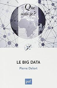 Le Big Data par Pierre Delort
