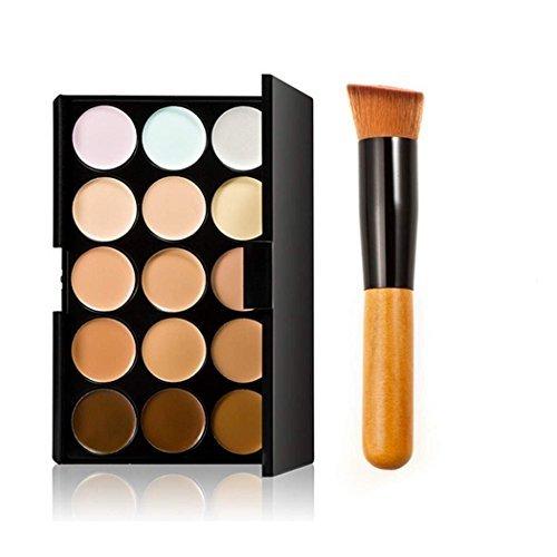 Danapp 15 Color Professional Concealer Camouflage Foundation Makeup Palette Set With Brush