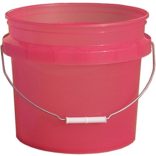 Encore Plastics 3.5-Gallon Residential Bucket BPA-free Container HDPE Pail Great for Paint Craft School Projects Food Storage ()