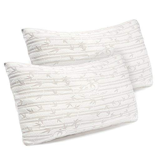 10 Best Hypoallergenic Pillows Best Choice Reviews