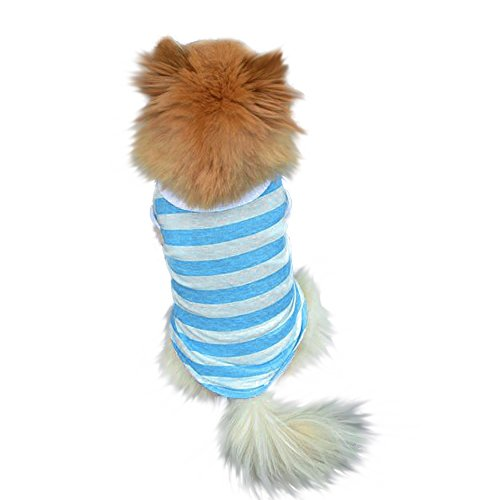 Costume Pup (Axchongery Dog Apparel, Cute Pet Lapel T-Shirt Small Puppy Stripe Jersey Soft Doggy Costume (Blue, XS))