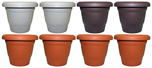 Set of 8 Black Duck Brand Plastic Multi Color 6'' Round Flower Planter/Pot (8, 6'' Round) by Black Duck Brand