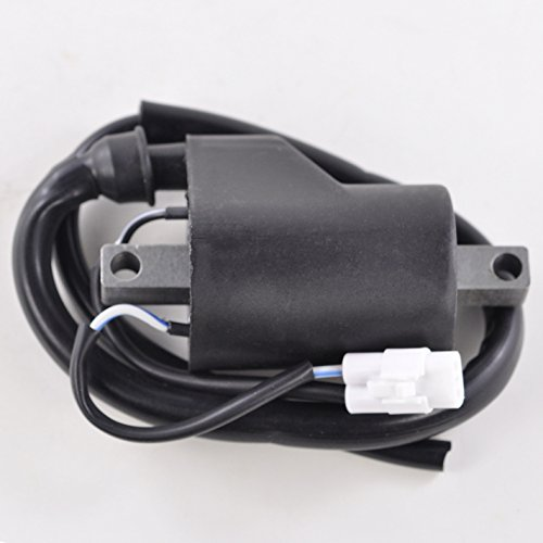 External Ignition Coil For Polaris Dragon Indy IQ RMK Pro Shift Switchback Fusion Assault Rush 600 700 800 900 2005-2017 OEM Repl.# 4013052 4011105 4012136 4014010 4014009 4011104