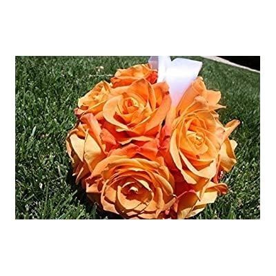 Fash Lady New! 20+ Orange LISIANTHUS Flower Seeds/Long Lasting Annual : Garden & Outdoor