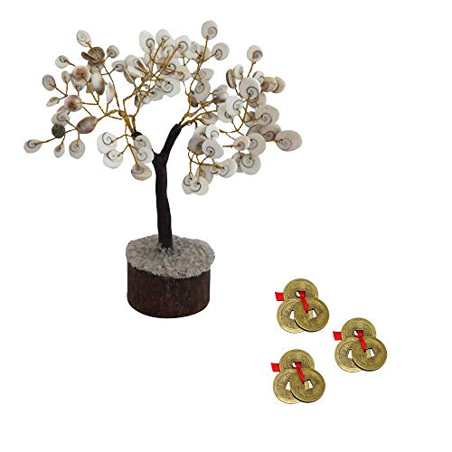 Divya Mantra Feng Shui Chinese Coins Set of 3 & Natural Gomati Chakra Healing Gem Stone Bonsai Fortune Vastu Plant Tree; Good Luck, Wealth, Success & Prosperity; Home Office Table Decor Gift Item
