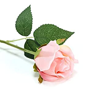 BalsaCircle 24 Blush Silk Single Stems Roses - Artificial Flowers Wedding Party Centerpieces Arrangements Bouquets Decorations 3