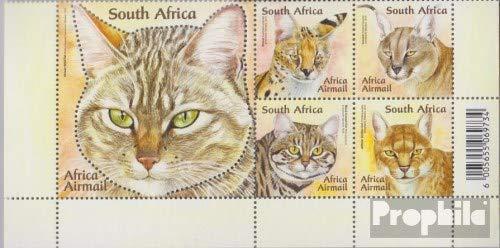 Afrique du sud 2037-2041 Timbres pour Les collectionneurs F/ünferblock 2011 Petits Chats compl/ète Edition Chats