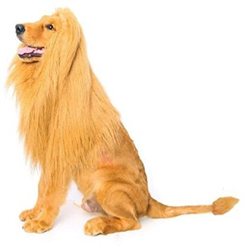 [T2C Lion Mane Costume and Big Dog Lion Mane Wig - Large Dog Costume Gift] (Last Minute Diy Toddler Halloween Costumes)