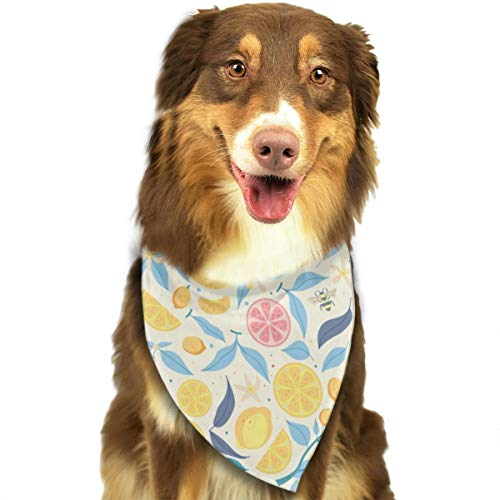 Pet Scarf Dog Bandana Bibs Triangle Head Scarfs Citrus Accessories for Cats Baby Puppy -