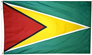 product image for Annin Flagmakers Model 193311 Guyana Flag Nylon SolarGuard NYL-Glo, 5x8 ft, 100% Made in USA to Official United Nations Design Specifications