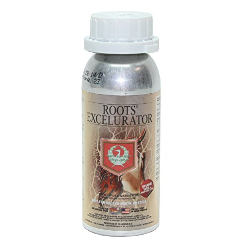House and Garden Roots Excelurator Silver 250 Mil - Organic Gardening Root Stimulator Plant Starter Solution ()