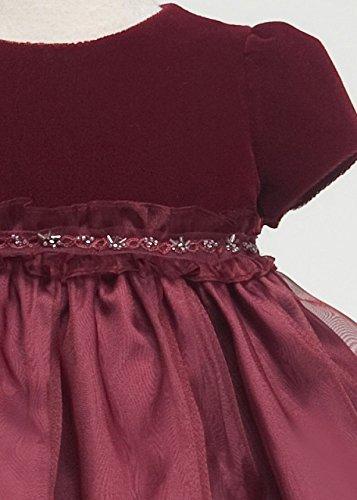 Velvet Cap Sleeves Top with Organza Overlaid Baby Flowers Girl Dress Wedding Burgundy S-XL