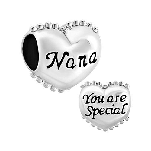 ReisJewelry Love Grandma Nana You Are Special Charms Family Charm Beads For Bracelets (Nana You Are Special Heart) Special Nana Heart Charm