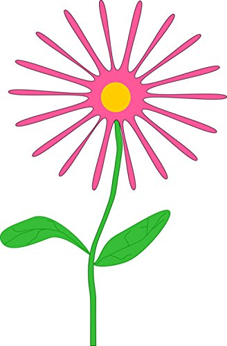 Gifts Delight Laminated 24x36 inches Poster: Flower Daisy Pink Plant Green Leaves Stem Floral Blooming Blossom Spring Still Life Cheerful Petals Thin