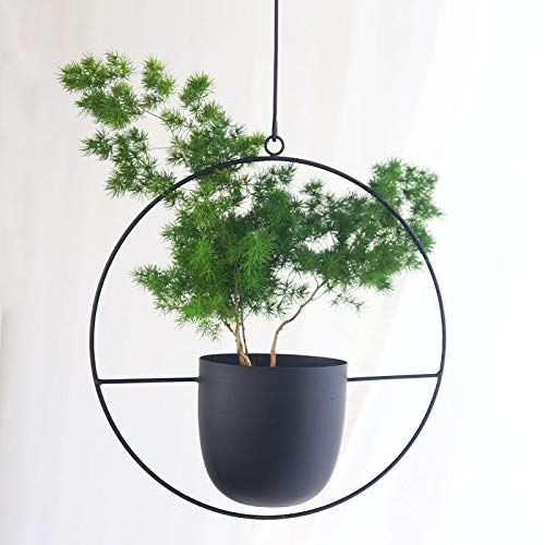 Sinolodo Metal Hanging Planters Boho Plant Hanger for Indoor Wall and Ceiling Hanging planters,Metal Black(Round) (Indoor Metal Planters)