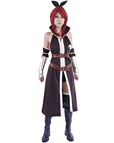 Miccostumes Women's Fairy Tail Erza Scarlet Purple Cosplay Costume (Women M, (Fairy Tail Costumes)