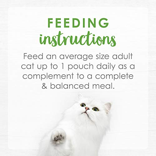 Purina Fancy Feast Broths Adult Wet Cat Food Complement 12