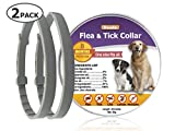 Duuda 2 Pack Dogs Flea and Tick Collar - 8 Months Protection for Dog and Puppies - Waterproof, Adjustable, Hypoallergenic and Ultra Safe Insect Repellent with Natural Essential Oils