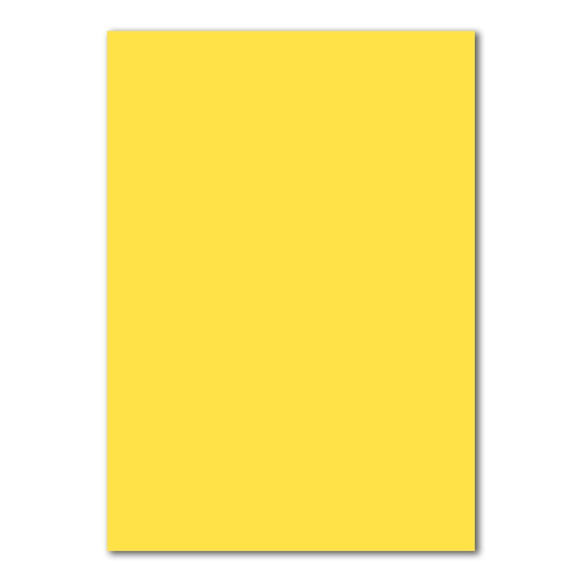 foglio in plano Gesamtparent Foglio di carta DIN A4 50 Blatt 10-Hochwei/ß 160/g//m/² FarbenFroh