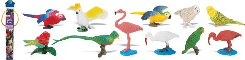Safari Ltd Exotic Birds TOOB - Comes With 13 Different Hand Painted Toy Figurine Models - Including Parakeet, Macaw, Humming Bird, Toucan, Ibis, Cockatoo, Flamingo, Owl, And More - For Ages 3 And Up