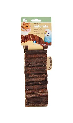 41jWwSPVRVL Prevue Pet Products Naturals Small Wonder Walk Bird & Small Animal Ladder 62808