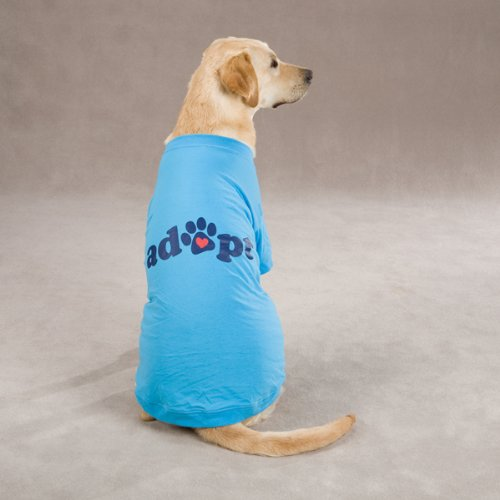Casual Canine Polyester/Cotton Adopt Dog Tee, Medium, 16-Inch, Blue
