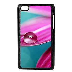 Best Case for Ipod Touch 4 - crystal ( WKK-R-505745 )