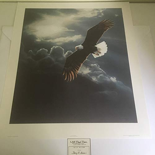 Limited Edition Print Out of The Storm-Eagle-Terry Isaac