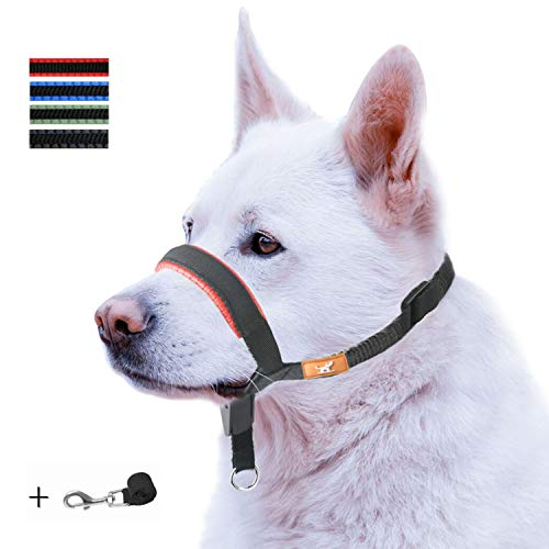 wintchuk Dog Head Collar with Padded Leather, Head Harness Stops Dog Pulling, Head Leash(M, Red)