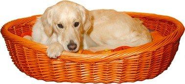 Trixie Wicker Basket - Large 90cm (Basket Wicker Dog)