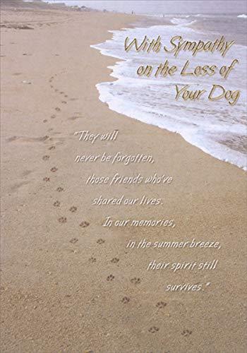 - Dog Paw Prints on Sandy Beach - Designer Greetings Pet Sympathy Card