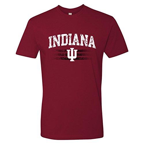 AS21 - Indiana Hoosiers Dynasty Logo T-Shirt Premium Cotton- Small - Cardinal