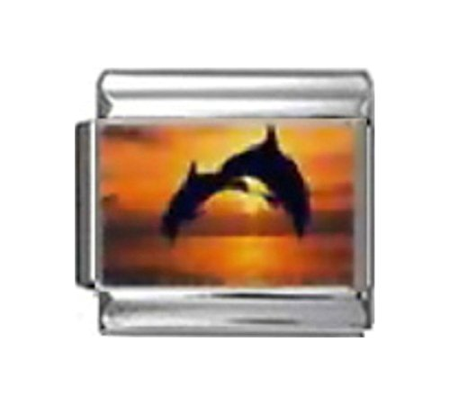 Dolphin 9mm Italian Charm - Stylysh Charms Dolphins Jumping Sunset Photo Italian 9mm Link OC028