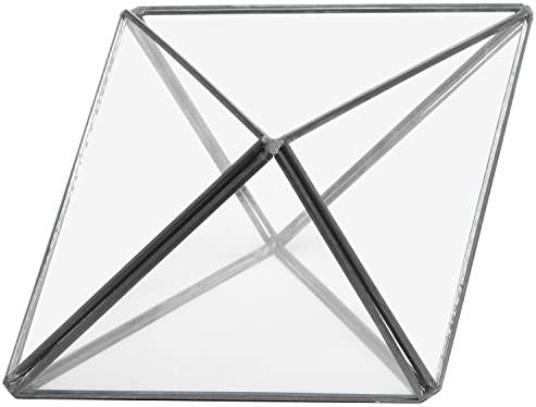 Modern Diamond Design Clear Faceted Succulent Air Plant Planter Box Pot//Keepsake Display Bowl MyGift