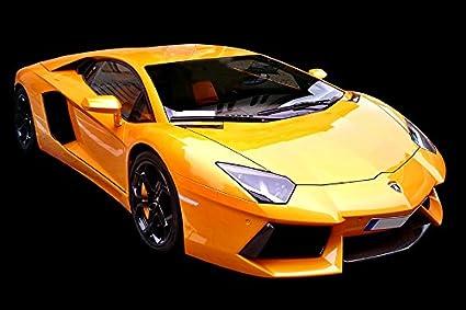 Amazon Com Lamborghini Poster 36 X 54 Inch Yellow Lamborghini