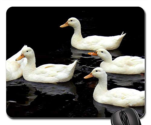 Aylesbury Ducks - Mouse Pad - Aylesbury Ducks Swimming Birds Water Wildlife Lake