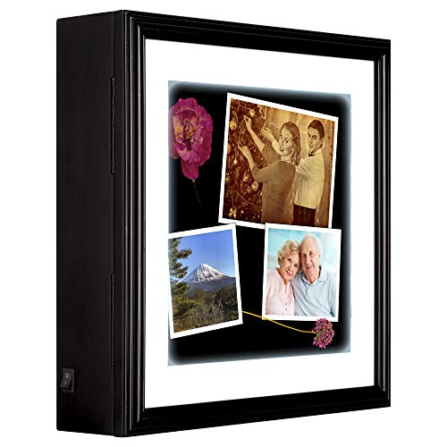 Box Shadow Lighted - Gallery Solutions LED Lighted Memorabilia Shadow Box Display Case, 14X14, Black with White Mat