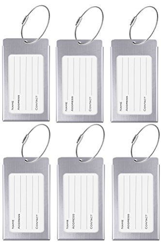 Business Card Cap (Luggage Tags, WeBravery Suitcase Labels Business Card Holder Travel Bag ID Metal Luggage Tag (6Pack-Silver))