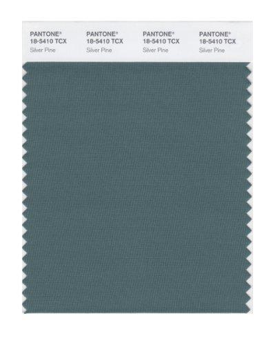 PANTONE SMART 18-5410X Color Swatch Card, Silver - Pantone Silver Color