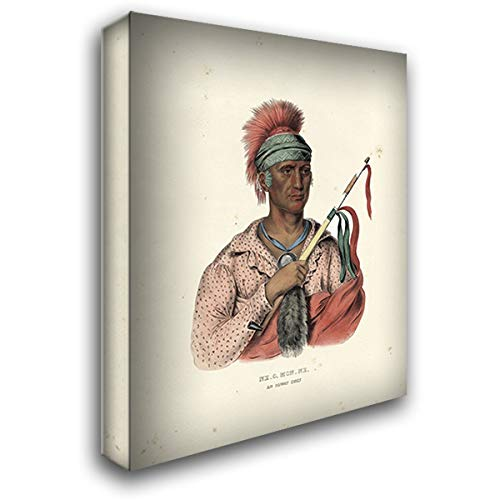 an Ioway Chief 28x36 Gallery Wrapped Stretched Canvas Art by McKenney and Hall