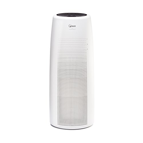 Winix NK100 True Hepa Tower Air Purifier, White, Large